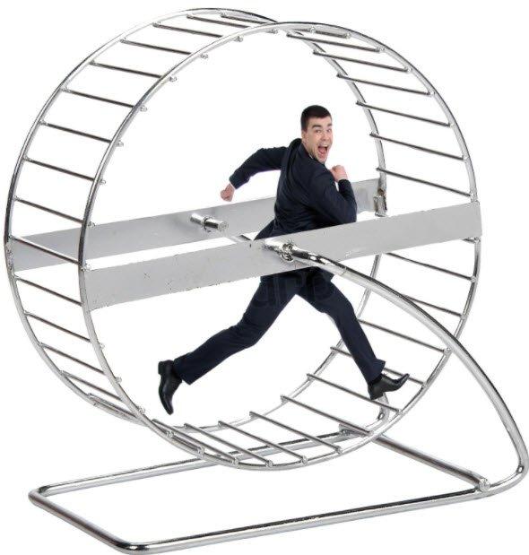 The Great Hamster Wheel Journey.jpg